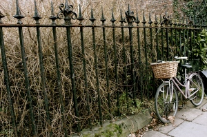Bicycle next to a gate.